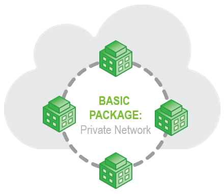 SD-WAN basic package